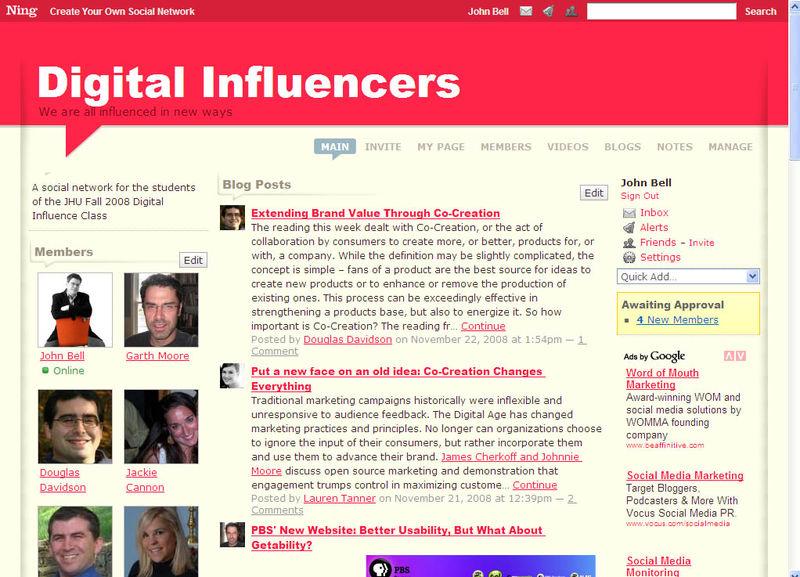 NING_Digital_Influencers