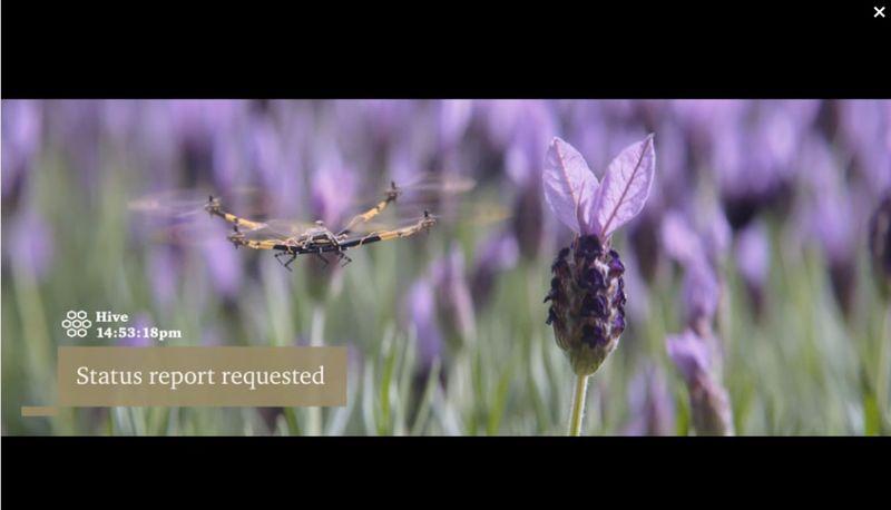 PWC_drone_video